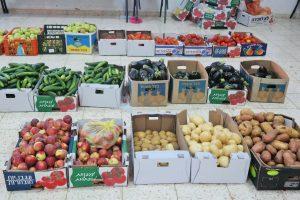 ארגזי ירקות ממוינים