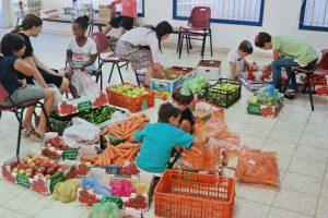 ממיינים ירקות לארגזים
